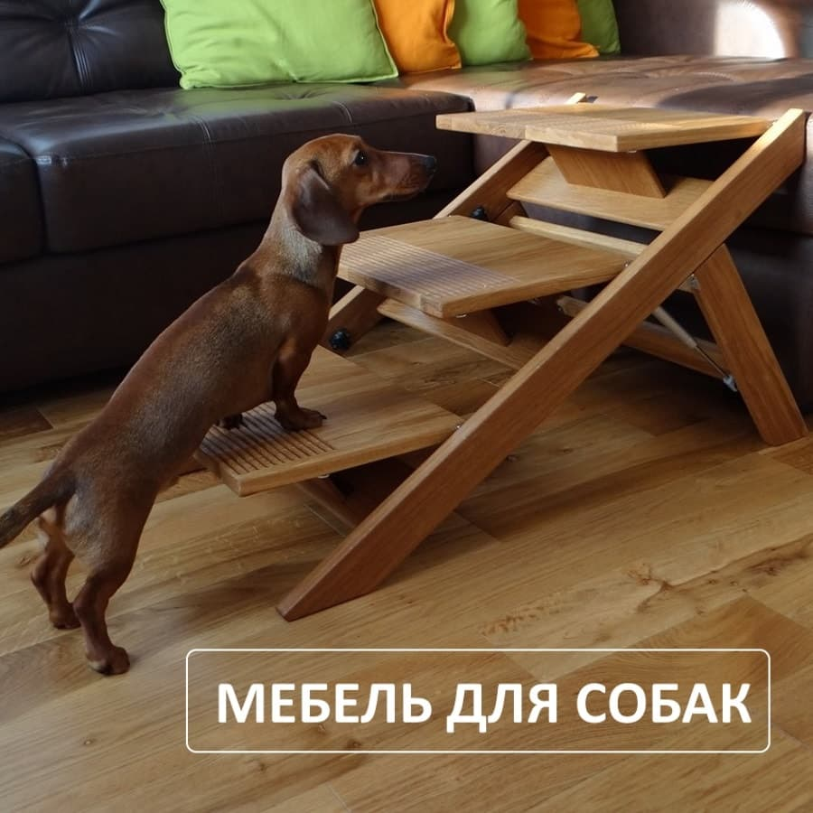Изображение - Мебель для животных lesenka-dlya-sobak11