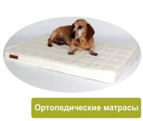 Изображение - Мебель для животных ortopedicheskij-matras-dlya-sobak-1-min